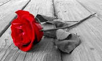 [Cerpen] Bunga Mawar di Persimpangan