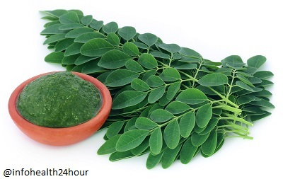 Amazing Benefits of Moringa and Side Effects in Fertility - Healthy Life