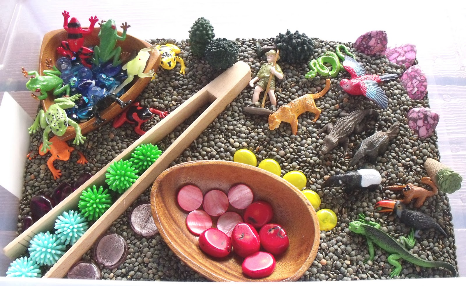 Nurturing Naters With Learning Activities At Home Rainforest Sensory Tub Rainforest Preschool