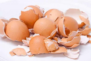 egg shell benefits in urdu
