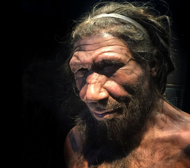 Neanderthals could make fire – just like our modern ancestors