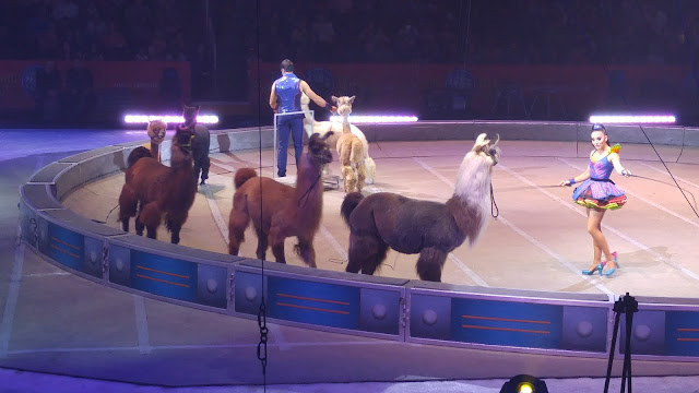 Ringling Bros and Barnum & Bailey Out Of This World circus