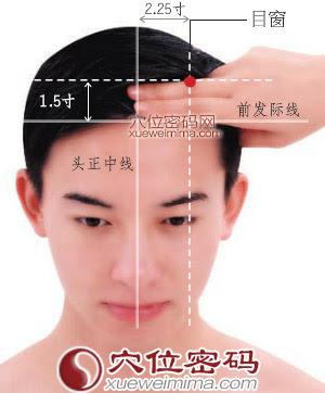 目窗穴位 | 目窗穴痛位置 - 穴道按摩經絡圖解 | Source:xueweitu.iiyun.com