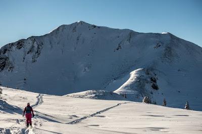 die besten Freerideabfahrten in den Kitzbüheler Alpen