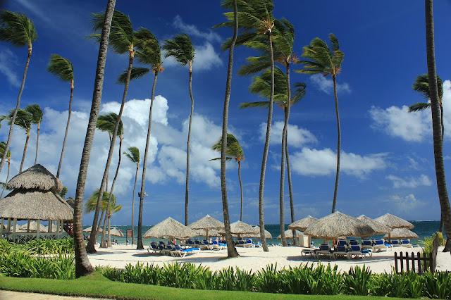 Dreams Palm Beach Resort Spa Punta Cana All Inclusive