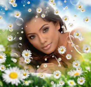 Ромашка - цветок женского имени Майя
