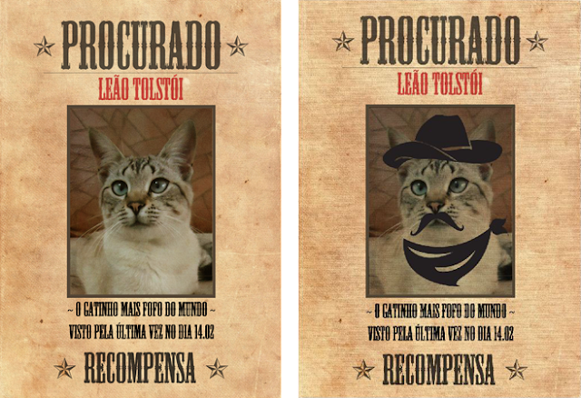 gato-perdido-encontrado-cartaz