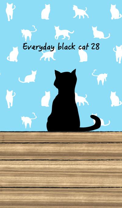 Everyday black cat28