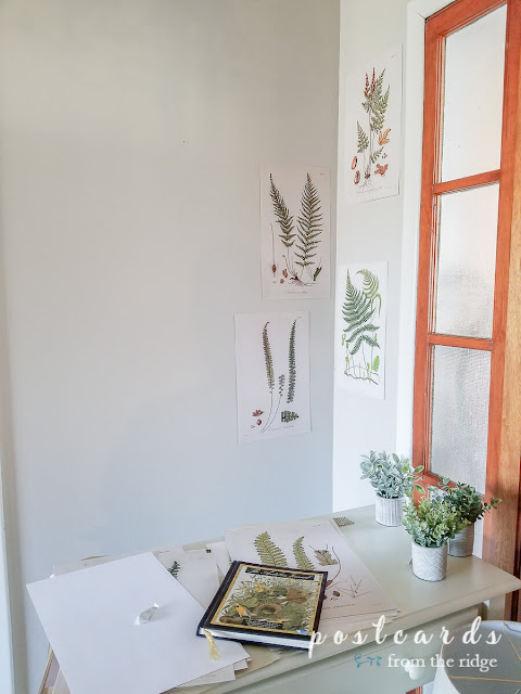 attaching fern prints to wall