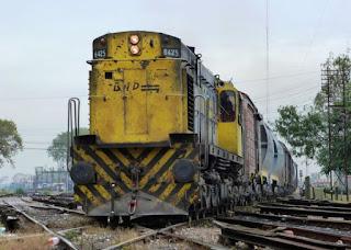 El Ferrocarril podría bajar un 40% los costos logísticos de las Bodegas