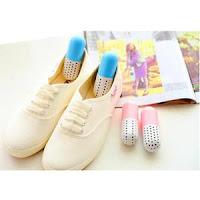 anti odeurs-Désodorisation pour chaussure à charbon