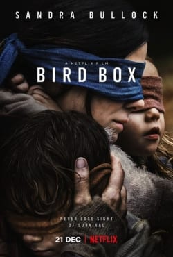 baixar caixa de p%25C3%25A1ssaros torrent - Caixa de Pássaros (Bird Box) Torrent (2018) Dublado / Dual Áudio 5.1 720p / 1080p – Download