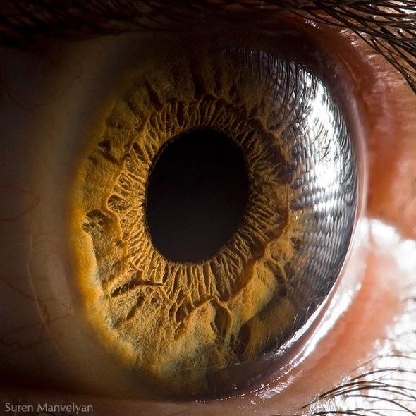 عينـــاك .. صدق او لا تصدق 21.jpg