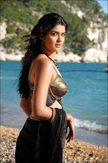 Beautiful Indian Women Model Pic, Charming Model Photo,  Indian Model Photo