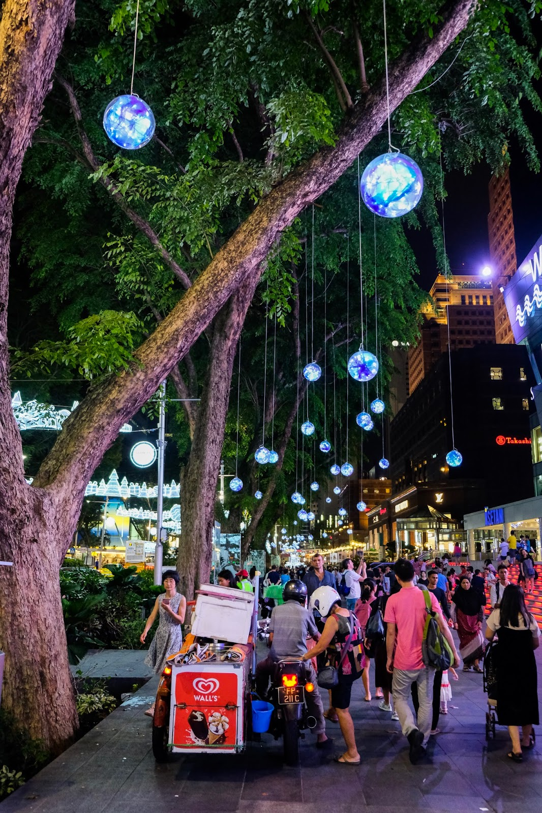 orchid road at christmas time singapore