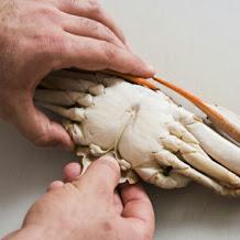 Cara Membersihkan Kepiting Yang Mudah Dan Cepat