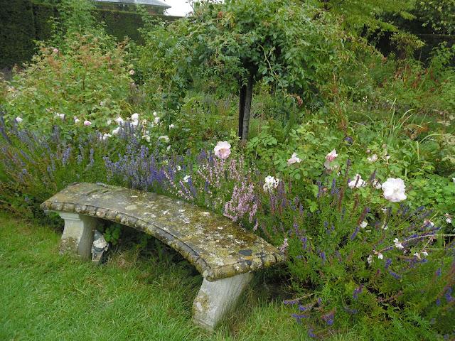 angielski ogród różany, kamienna ławka w ogrodzie