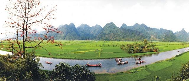 Pilgrims flock to Huong Pagoda on Tet holidays 3