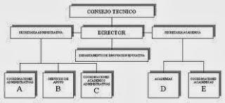 estructura-organizativa-de-una-empresa