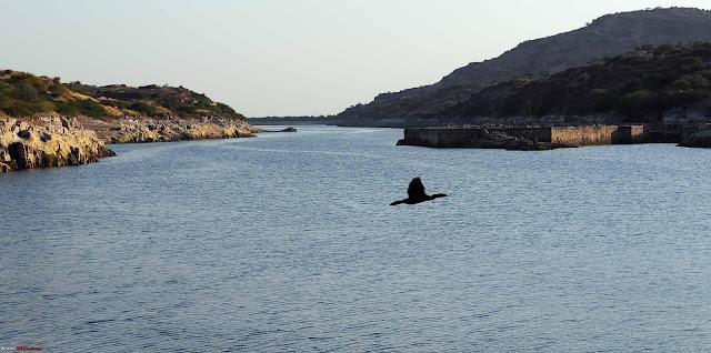 Balsamand-lake-in-Jodhpur-Tour