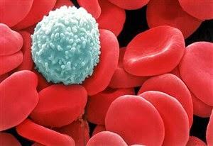 Manfaat mandi pagi yang dapat meningkatkan sel darah putih