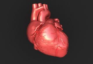 Macam penyakit jantung pada manusia