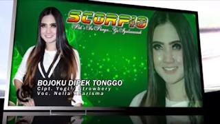 Lirik Lagu Bojoku Dipek Tonggo - Nella Kharisma