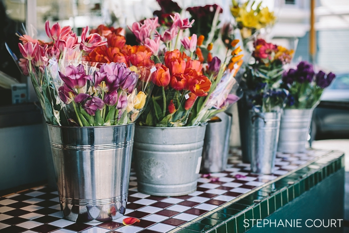 multicolored spring flowers