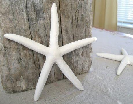 cast plaster starfish
