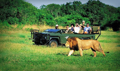 south-africa-targets-indian-tourists