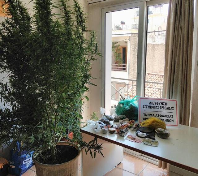 Σύλληψη 52χρονου στην Αργολίδα με ναρκωτικά