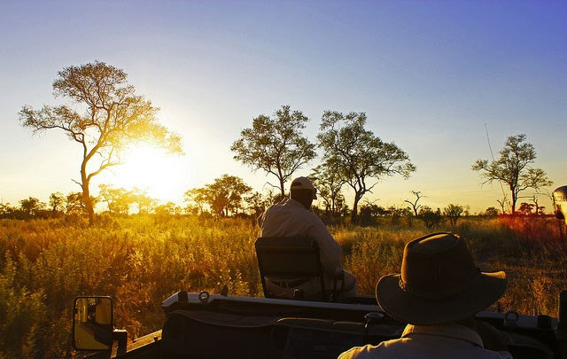 Chobe National Park Tours