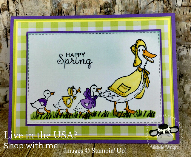 Card, Fable Friends, Spring, Ducks, Stampin Up
