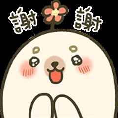 iGuang × A-Shu the Seal