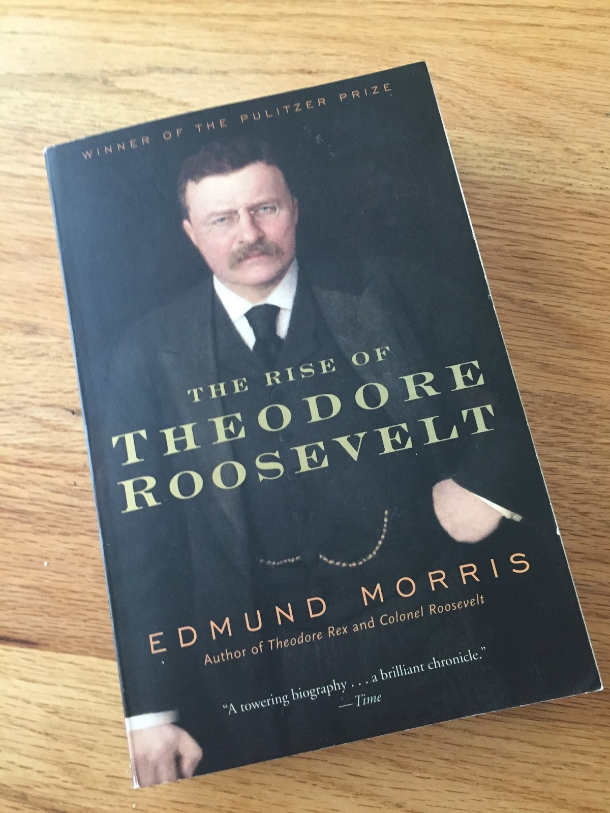 Chanchanchepon Review The Rise Of Theodore Roosevelt By
