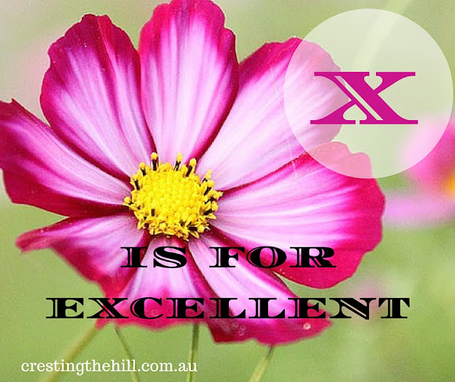 The A-Z of Positive Personality Traits - X is for eXcellent - www.crestingthehill.com.au