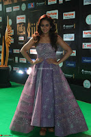 Parul Yadav in Stunning Purple Sleeveless Transparent Gown at IIFA Utsavam Awards 2017  Day 2  Exclusive 28.JPG