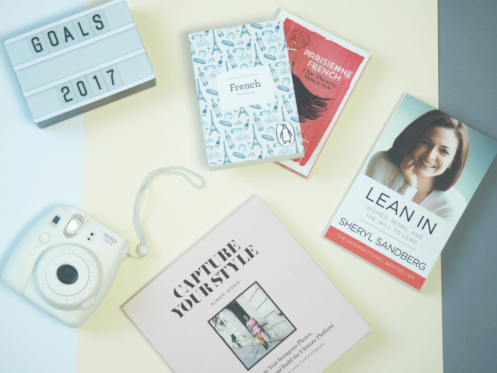 Blogger Goals 2017