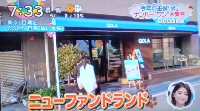 【TV紹介】日本テレビ「ZIP!」にクオーラ柿の木坂が紹…