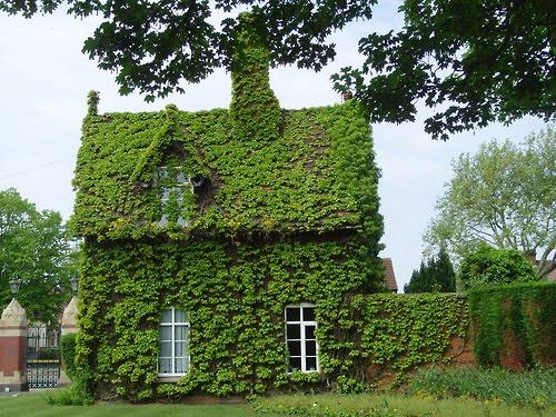Ivy Covered Gatekeeper's Cottage