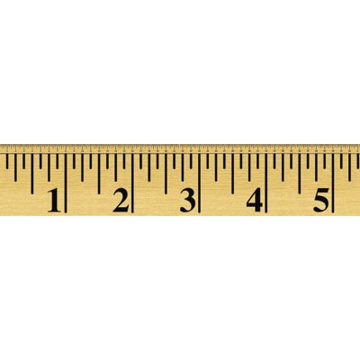 Размер мужского полового члена