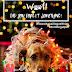 Φιλοζωικός Σύλλογο Φθιώτιδας: Κόβουμε την Πρωτοχρονιάτικη πίτα μας!
