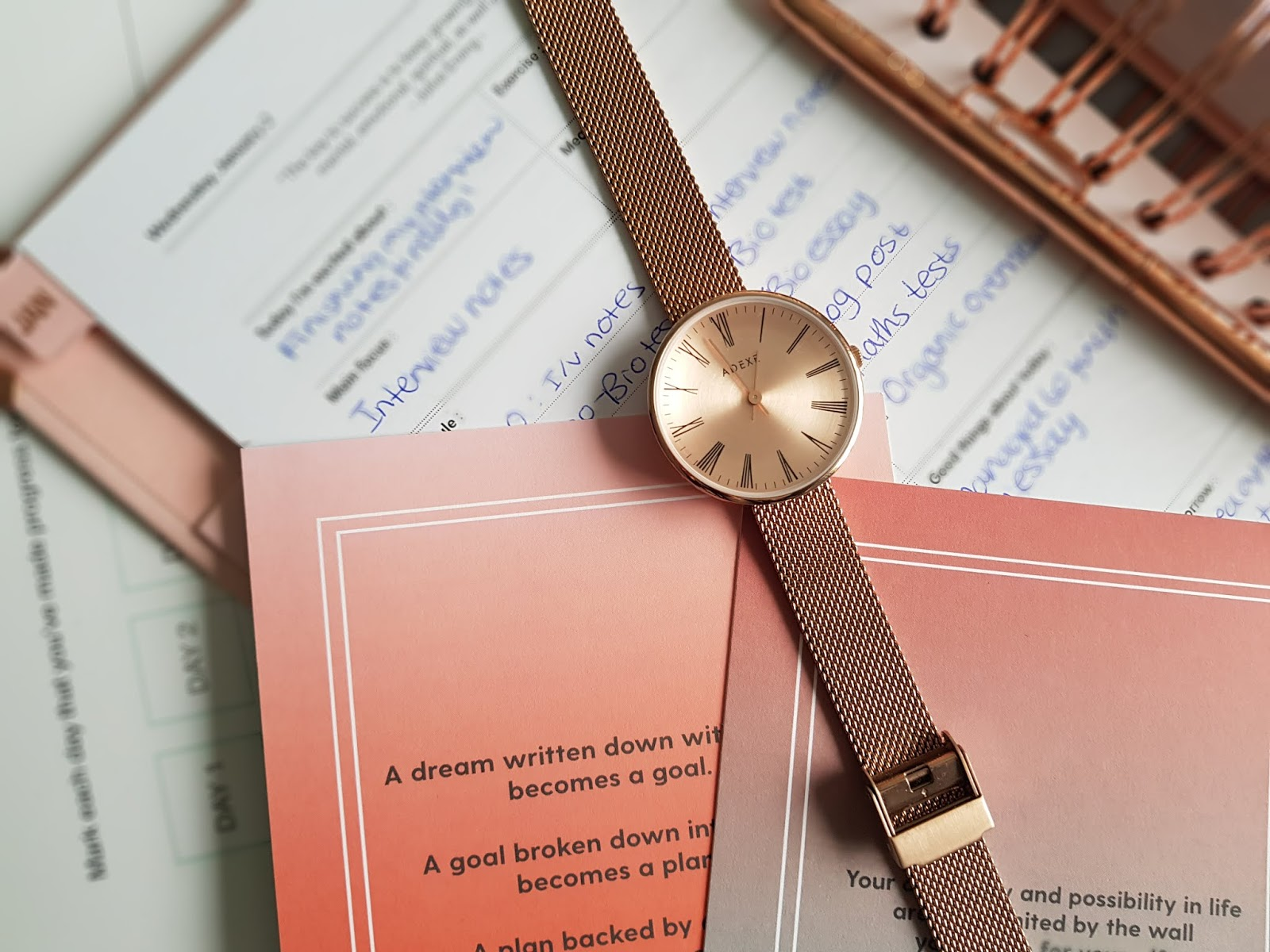 petite rosegold sistine watch adexe london