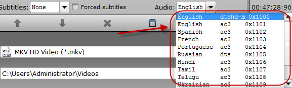 choose subtitles and audio tracks