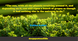 """""""The sun, with all the planets revolving around it, and depending on it, can still ripen a bunch of grapes as though it had nothing else in the universe to do.""""  ― Galileo"""