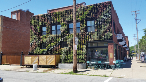 Green living wall breathes life into historic building in - Building a living wall ...