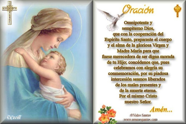 Imagenes Virgen Del Carmen