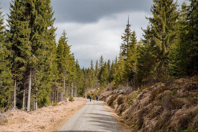 Auf vergessenen Wegen von Finsterau nach Buchwald  Wandern im Bayerischen Wald  Wanderung Nationalpark Bayerischer Wald 11