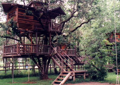 tree house institute oregon US