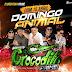 Crocodilo Prime No Baile Do Presidente Na Via Show 31-05-2018 - Dj Gordo E Dinho Pressão-Cd Ao Vivo-Baixar Grátis